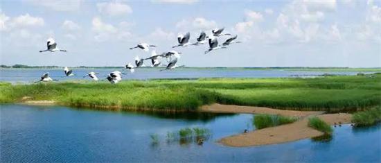 运用大数据监测技术来保护河湖湿地的生态